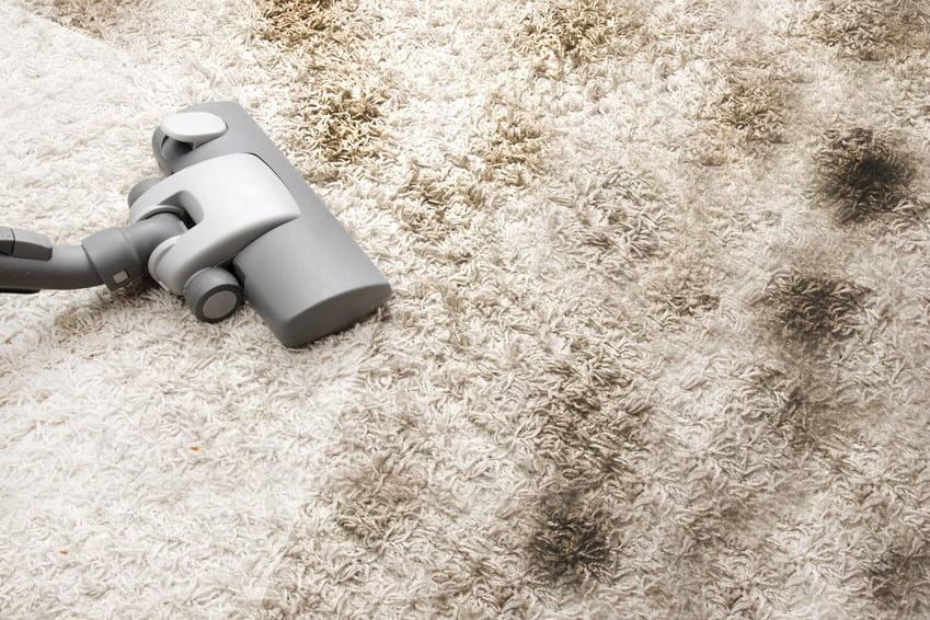 hiring carpet cleaners