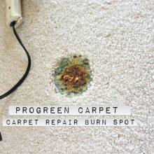 Carpet Repair Burn Spot
