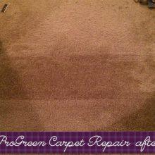 Carpet Repair in Raleigh-Durham