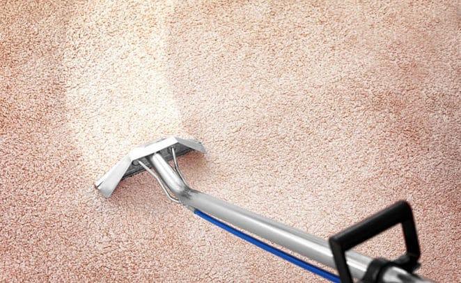 carpet cleaner durham