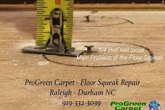 Floor Squeak repair